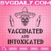 Vaccinated & Intoxicated Svg, Cinco De Mayo Svg, Mexico Vaccinated SVG, Svg Png Dxf Eps AI Instant Download