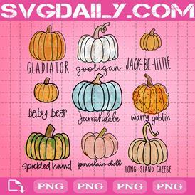 Fall Pumpkins Bundle Png, Pumpkin Varieties Png, Png Printable, Instant Download, Digital File