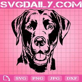 Labrador Dog Svg, Labrador svg, Black Labrador Svg, Dog Lover Svg, Dog Gift Svg, Svg Png Dxf Eps AI Instant Download